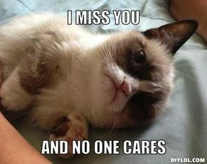 http://assets.diylol.com/hfs/dde/e23/5d4/resized/lonelygrumpy-cat-meme-generator-i-miss-you-and-no-one-cares-e418e6.jpg
