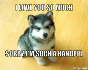 http://treasure.diylol.com/uploads/post/image/293209/resized_baby-courage-wolf-meme-generator-i-love-you-so-much-sorry-i-m-such-a-handful-c5588b.jpg