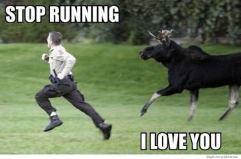 http://weknowmemes.com/wp-content/uploads/2011/11/stop-running-i-love-you.jpg