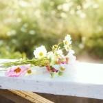 結婚式に出席しない場合の祝儀の相場は?家族や友人と職場(上司や部下)の場合は?