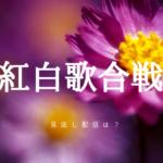 紅白歌合戦2018で欅坂も見逃した!お得にネット配信のフル動画を見る方法はあるか?