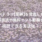 NHKドラマ【荒神】を見逃した?再放送やお得にフル動画を視聴できる方法は?