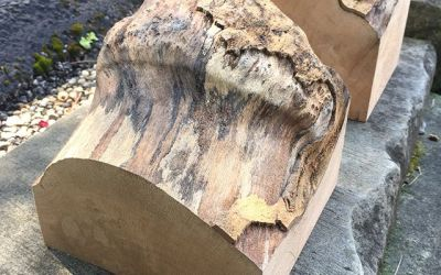 """Roughed Out Tree """"Brains"""""""