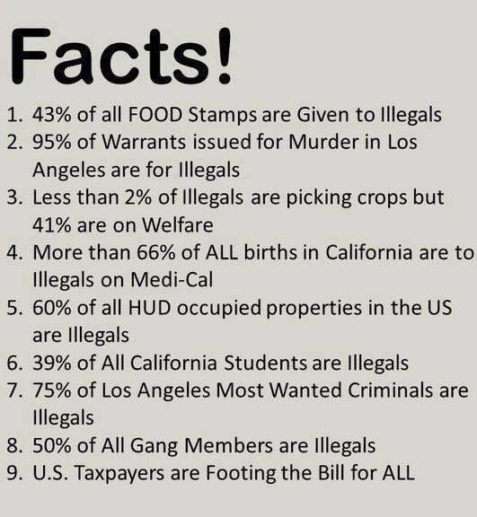 bogus facts on illegal immigrants the meme policeman. Black Bedroom Furniture Sets. Home Design Ideas