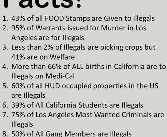 Illegal immigrant welfare meme