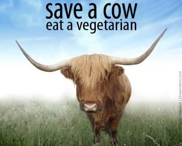 vegetarian meme