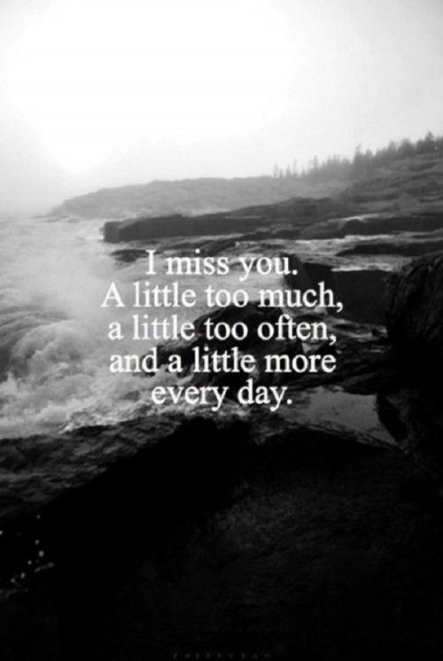 Each Day I Love You More Quotes