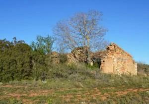 memolivre maison en ruine