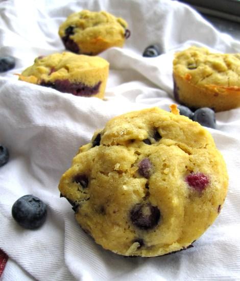 Gluten-Free Blueberry Muffins   memo2munch