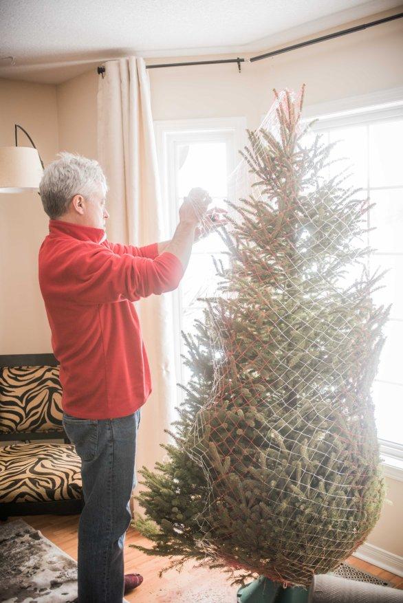 to-kill-a-christmas-tree-16