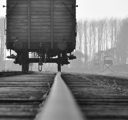 La libération d'Auschwitz et la Journée mondiale de l'Holocauste