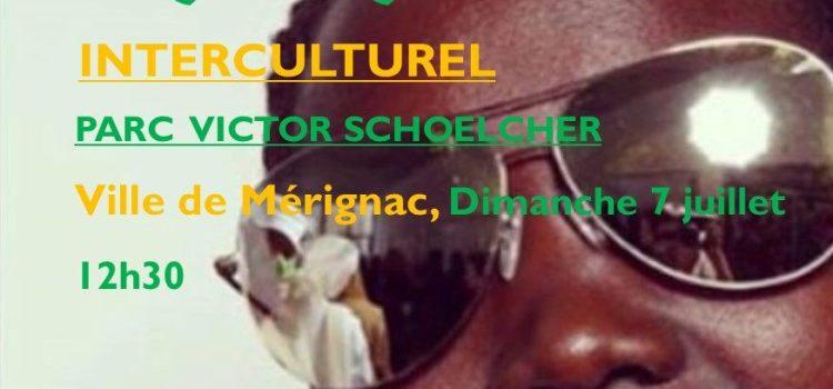 C'EST L'ÉTÉ – Pique-nique interculturel au parc Victor Schoelcher