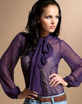 sheer_blouse