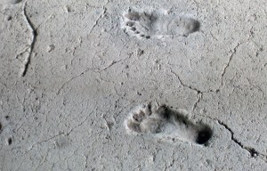 Ancient footprints of Acahualinca – The human and animal footprints in Managua