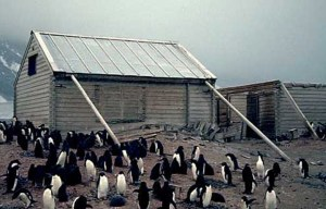 Borchgrevink's Hut – The first human structure ever built on the Antarctic continent in Cape Adare