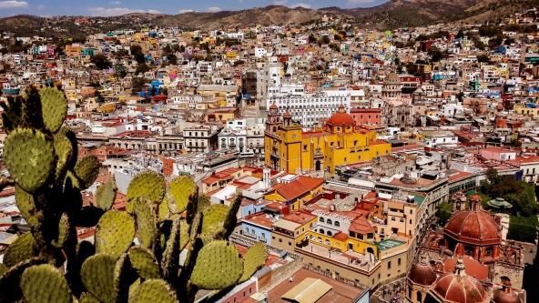 15712_Guanajuato-2019_001_592x333