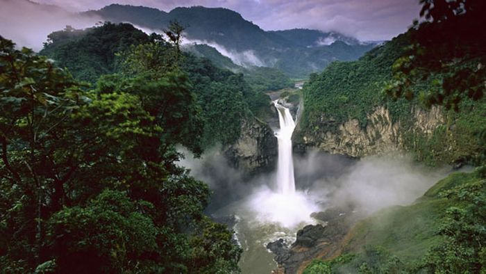 the-beauty-of-amazon-forest-36