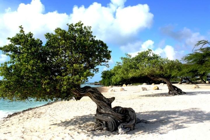 Aruba-271-930x620