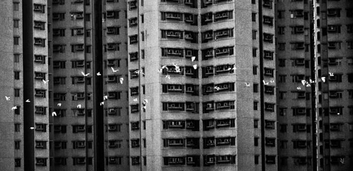 hongkong-flyingthroughthecity