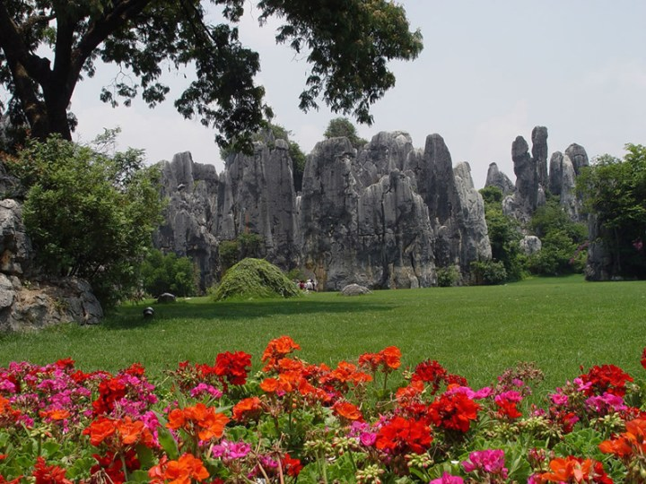 Gardens-Shilin-Stone-Forest