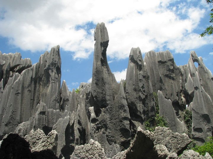 Stone-Forest-Shi-Lin