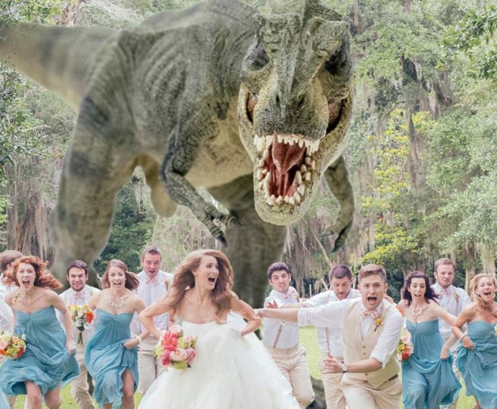 tyrannosaurus-rex-wedding-photo-quinn-miller-5
