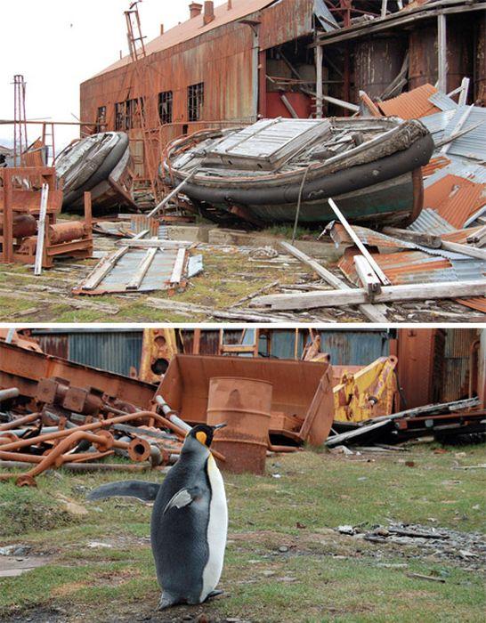 abandoned_wonders_of_antarctica_11