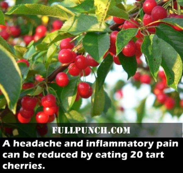 fascinating_health_facts_17