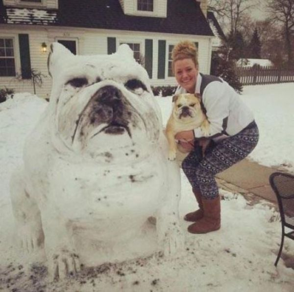 pet_owners_who_should_get_medals_for_being_awesome_02