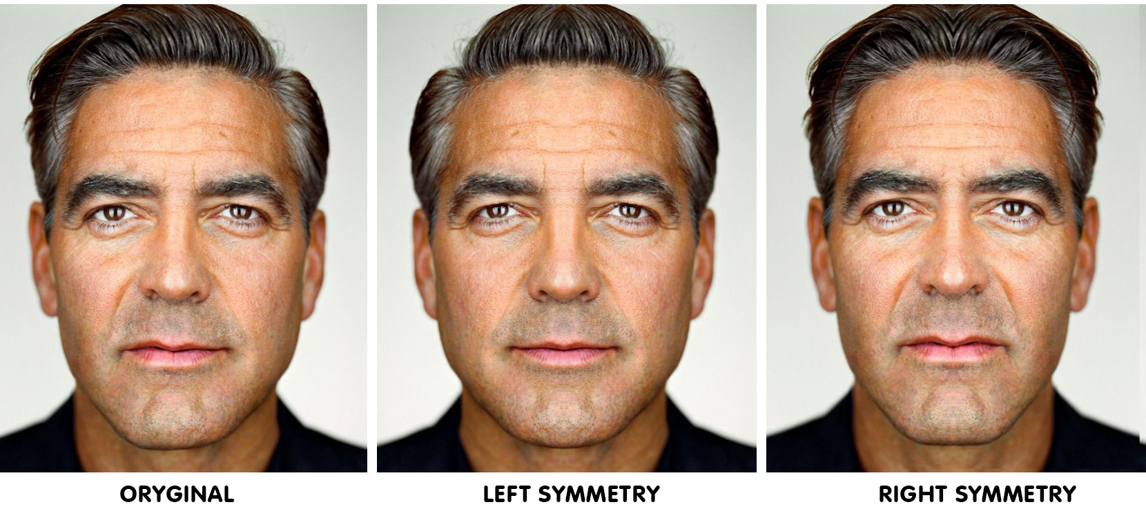 Face Symmetry of Celebrities - youbeauty.com