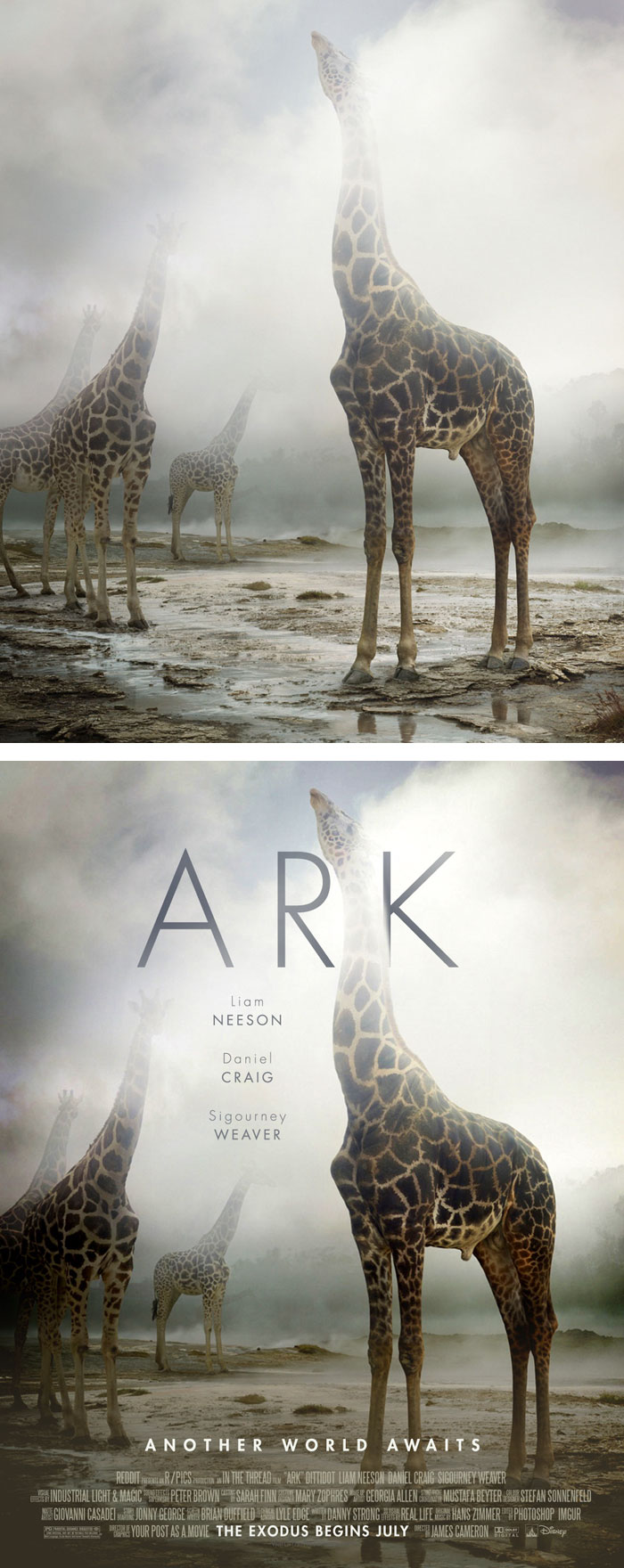 random-photos-turned-into-movie-posters-120__700