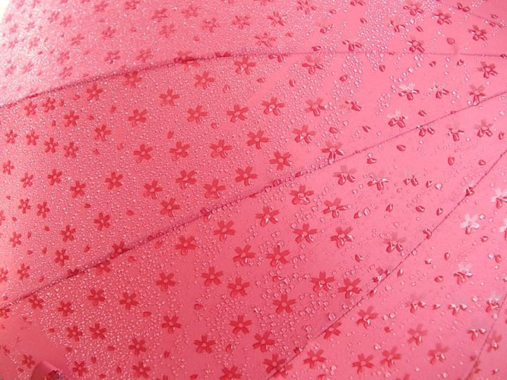 umbrella-reveals-pattern-wet-japan-14