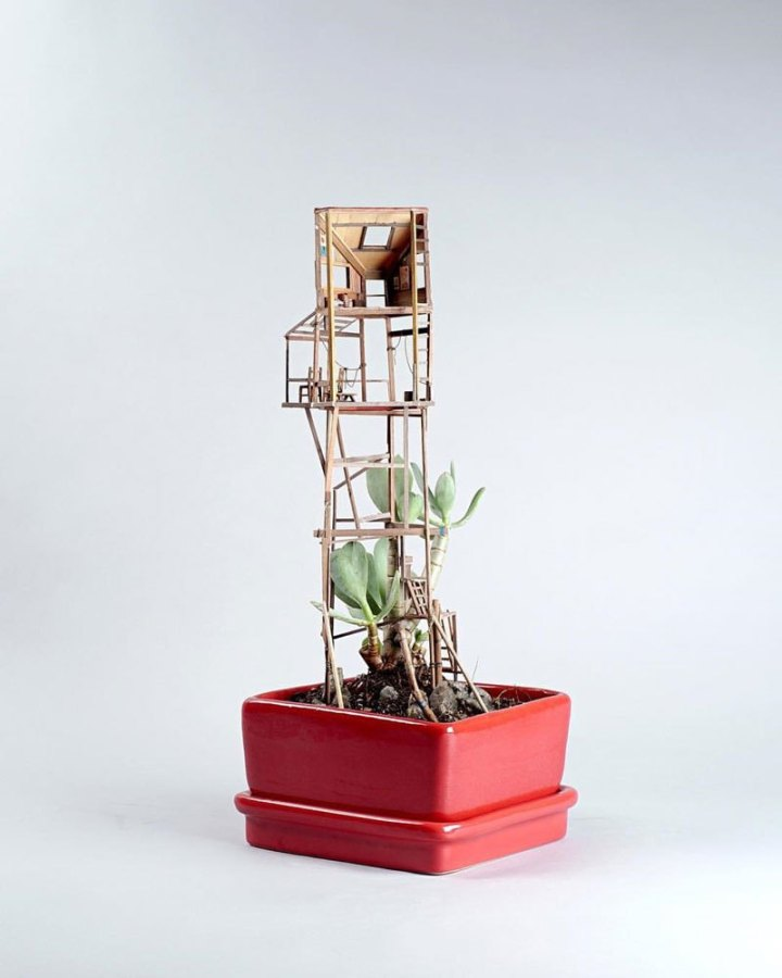 treehouses-for-house-plants-by-jedediah-corwyn-voltz-9