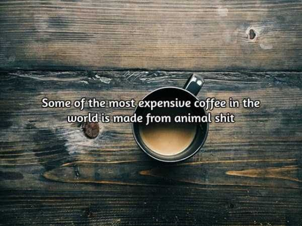 facts-about-coffee-10