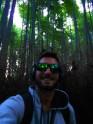 Bosque de Bamboo- Kyoto - Japón