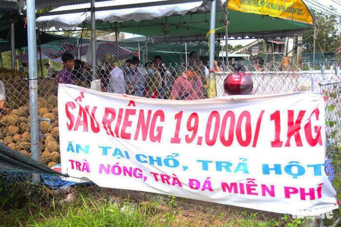 Sầu Riêng được bán với giá 19.000 đồng/kg gây sốt thời gian qua