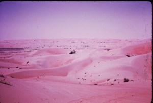 the Liwa...desert beyond Abu Dhabi