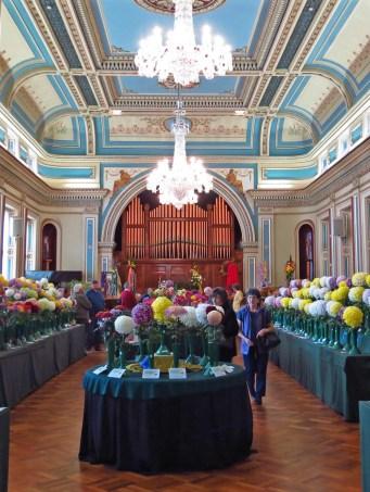 Hobart town hall flower show 051_2214x2691