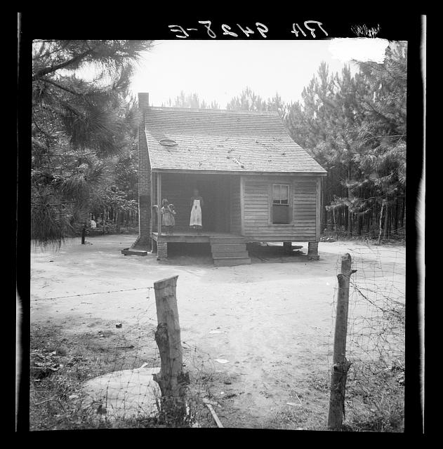 Home of turpentine worker near Cordele, Alabama. Fathers wage is one dollar a day. This is the standard of living the turpentine trees support.  1936 July (Photo: Dorothea Lange)