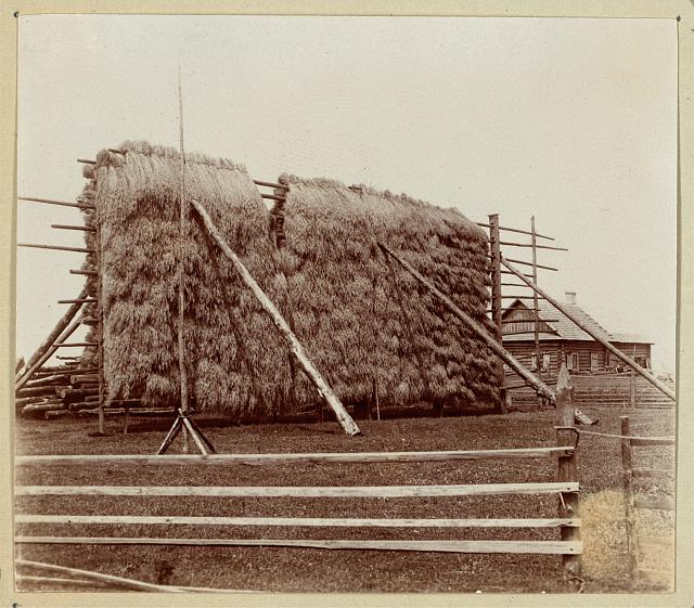 Haystack. At the village of Bychi