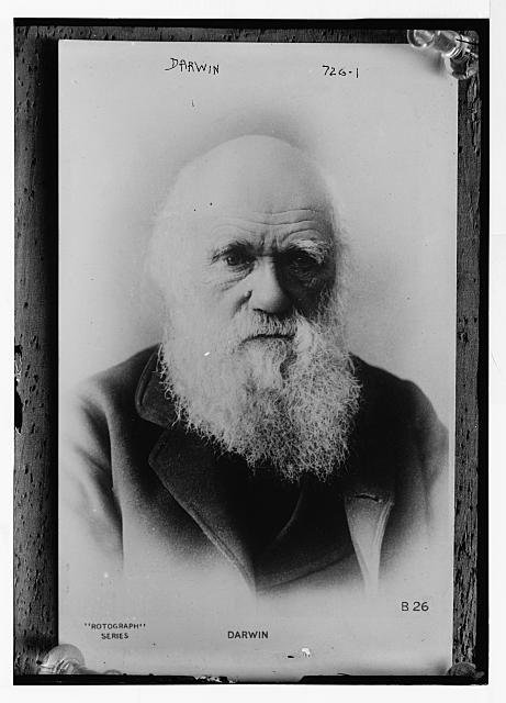 Charles Carlyle Darwin, Naturalist, 1809 -1882