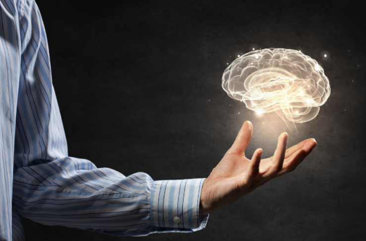 The Memory Professor System  Image of screen brain in hand