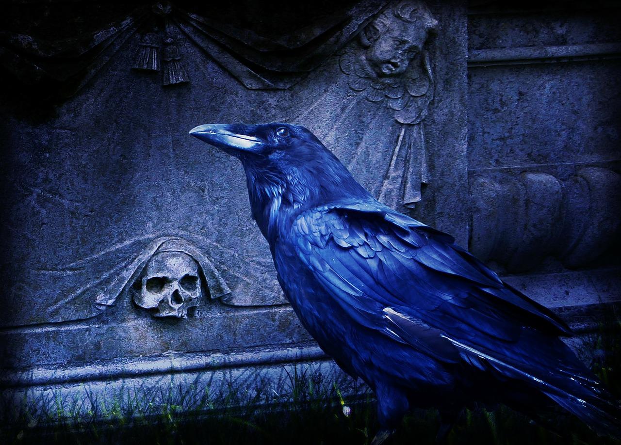 El Cuervo Edgar Allan Poe Memo Valera