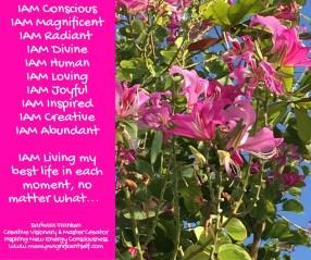 IAM Conscious