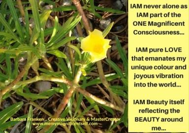 IAM Never Alone...
