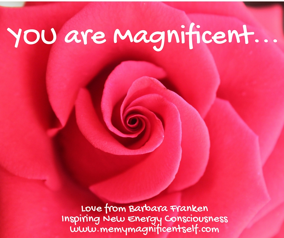 You are Magnificent...