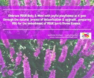 Embrace Body & Mind...