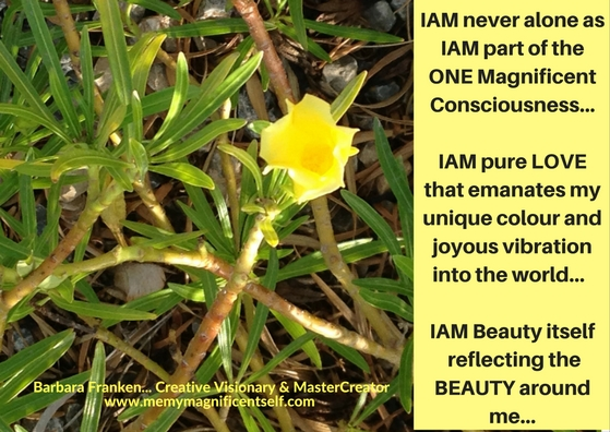 www.memymagnificentself.com