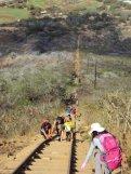 Koko Head Crater Trail is a popular hike.