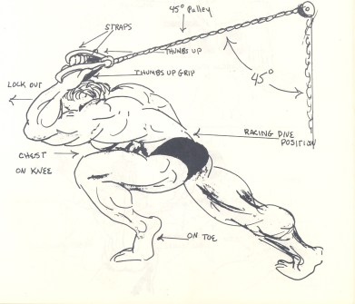NS_overhead_tricep_extension.jpg